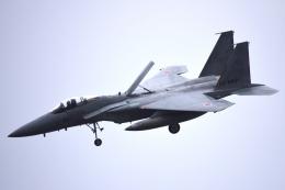 SYさんが、岐阜基地で撮影した航空自衛隊 F-15J Eagleの航空フォト(飛行機 写真・画像)