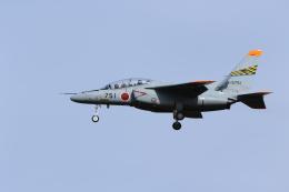 ☆ゆっきー☆さんが、岐阜基地で撮影した航空自衛隊 T-4の航空フォト(飛行機 写真・画像)