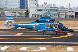 (新)ふぁんとむ改さんが、東京ヘリポートで撮影した警視庁 EC155B1の航空フォト(飛行機 写真・画像)