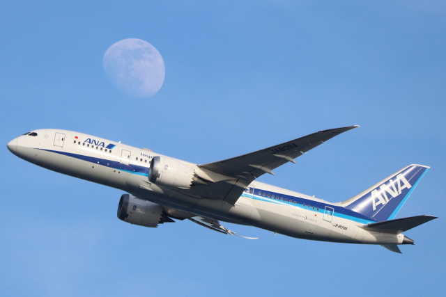 imosaさんが、羽田空港で撮影した全日空 787-8 Dreamlinerの航空フォト(飛行機 写真・画像)