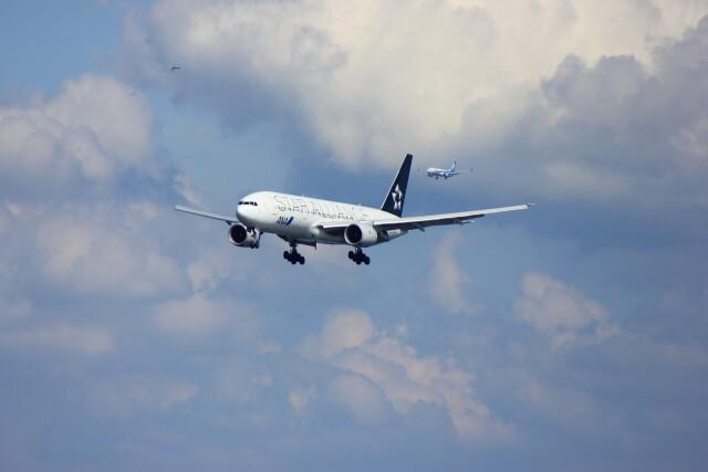 メンチカツさんが、羽田空港で撮影した全日空 777-281の航空フォト(飛行機 写真・画像)