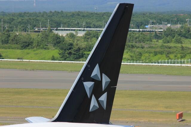 メンチカツさんが、新千歳空港で撮影した全日空 777-281の航空フォト(飛行機 写真・画像)