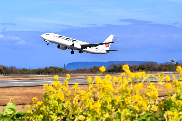 高松空港 - Takamatsu Airport [TAK/RJOT]で撮影された高松空港 - Takamatsu Airport [TAK/RJOT]の航空機写真(フォト・画像)