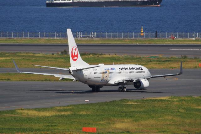 飛行機ゆうちゃんさんが、羽田空港で撮影した日本航空 737-846の航空フォト(飛行機 写真・画像)