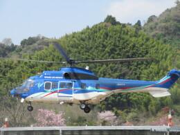チダ.ニックさんが、静岡ヘリポートで撮影した東北エアサービス AS332L1 Super Pumaの航空フォト(飛行機 写真・画像)
