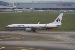 航空フォト:9M-MLG マレーシア航空 737-800