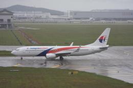 航空フォト:9M-MLJ マレーシア航空 737-800