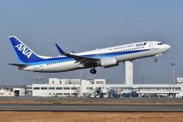航空フォト:JA62AN 全日空 737-800