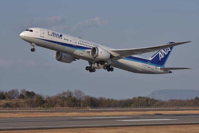qooさんが、高松空港で撮影した全日空 787-9の航空フォト(飛行機 写真・画像)