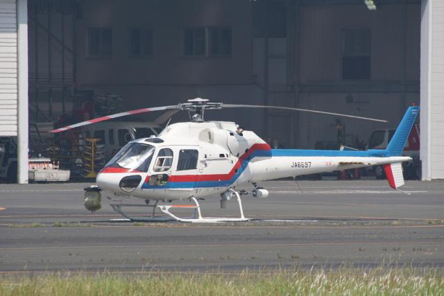 神宮寺ももさんが、東京ヘリポートで撮影した東邦航空 AS355F2 Ecureuil 2の航空フォト(飛行機 写真・画像)