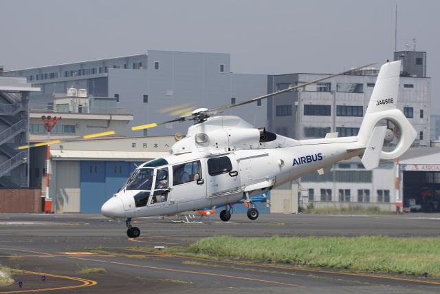 神宮寺ももさんが、東京ヘリポートで撮影したエアバス・ヘリコプターズ・ジャパン AS365N2 Dauphin 2の航空フォト(飛行機 写真・画像)