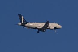 fox_samさんが、ニノイ・アキノ国際空港で撮影したグローバル・ジェット・ルクセンブルク A319-115CJの航空フォト(飛行機 写真・画像)