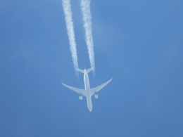 songsさんが、新千歳空港で撮影した全日空 777-381/ERの航空フォト(飛行機 写真・画像)