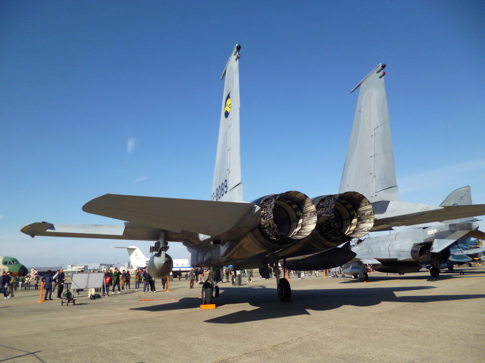 masahiさんの航空自衛隊 Mitsubishi F-15DJ Eagle (62-8089) 航空フォト