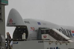玉蜀黍茶さんが、小松空港で撮影したカーゴルクス 747-8R7F/SCDの航空フォト(飛行機 写真・画像)