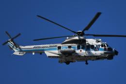チャーリーマイクさんが、新木場で撮影した海上保安庁 EC225LP Super Puma Mk2+の航空フォト(飛行機 写真・画像)