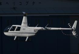 チャーリーマイクさんが、東京ヘリポートで撮影した日本法人所有 R44 IIの航空フォト(飛行機 写真・画像)