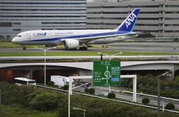 flying_horseさんが、羽田空港で撮影した全日空 787-8 Dreamlinerの航空フォト(飛行機 写真・画像)