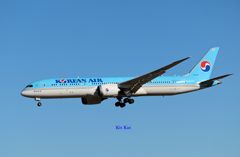 キットカットさんの大韓航空 Boeing 787-9 (HL8345) 航空フォト