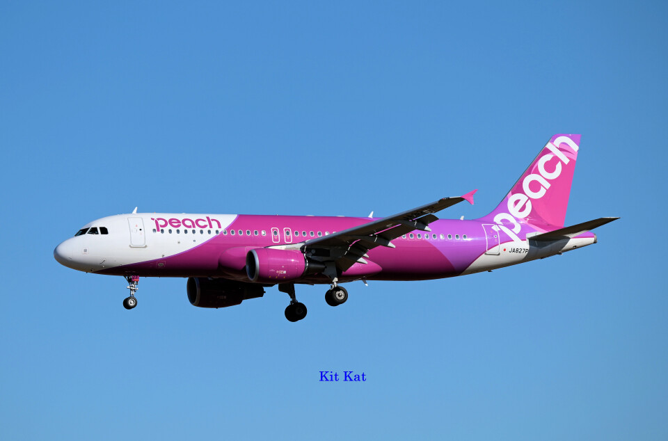 キットカットさんのピーチ Airbus A320 (JA827P) 航空フォト