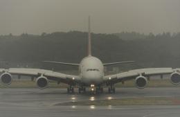 エルさんが、成田国際空港で撮影したアシアナ航空 A380-841の航空フォト(飛行機 写真・画像)