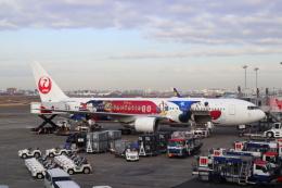 kenzy201さんが、羽田空港で撮影した日本航空 767-346/ERの航空フォト(飛行機 写真・画像)