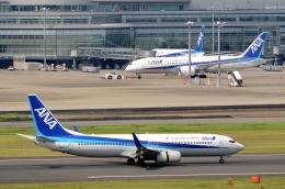 h_wajyaさんが、羽田空港で撮影した全日空 737-881の航空フォト(飛行機 写真・画像)