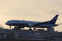 flyflygoさんが、福岡空港で撮影した全日空 787-8 Dreamlinerの航空フォト(飛行機 写真・画像)