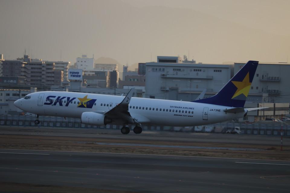 flyflygoさんのスカイマーク Boeing 737-800 (JA73NE) 航空フォト