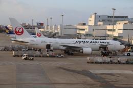 flyflygoさんが、福岡空港で撮影した日本航空 767-346/ERの航空フォト(飛行機 写真・画像)