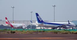 taka1129さんが、羽田空港で撮影したユニバーサルエンターテインメント A318-112 CJ Eliteの航空フォト(飛行機 写真・画像)