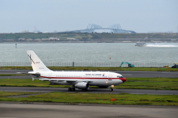 taka1129さんが、羽田空港で撮影したスペイン空軍 A310-304の航空フォト(飛行機 写真・画像)