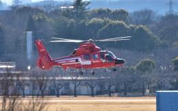 RyuRyu1212さんが、立川飛行場で撮影した東京消防庁航空隊 AS365N3 Dauphin 2の航空フォト(飛行機 写真・画像)