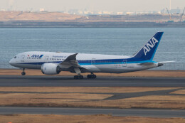 Koenig117さんが、羽田空港で撮影した全日空 787-8 Dreamlinerの航空フォト(飛行機 写真・画像)