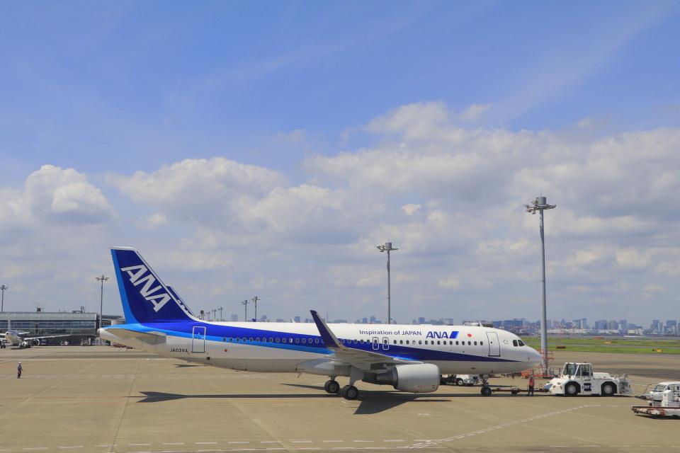 しかばねさんの全日空 Airbus A320 (JA03VA) 航空フォト