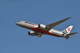 みすちゃんさんが、成田国際空港で撮影したジェットスター 787-8 Dreamlinerの航空フォト(飛行機 写真・画像)
