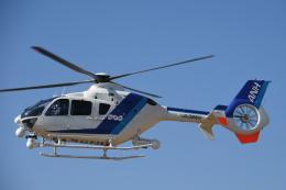 チャーリーマイクさんが、東京ヘリポートで撮影したオールニッポンヘリコプター EC135T2の航空フォト(飛行機 写真・画像)