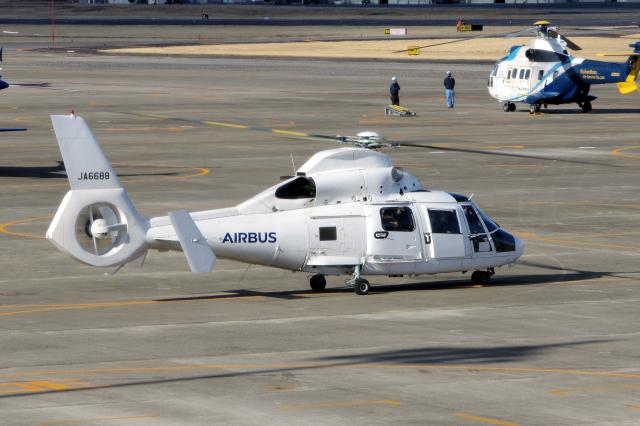yabyanさんが、名古屋飛行場で撮影したエアバス・ヘリコプターズ・ジャパン AS365N2 Dauphin 2の航空フォト(飛行機 写真・画像)
