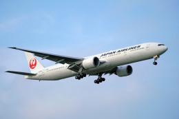 ちゃぽんさんが、成田国際空港で撮影した日本航空 777-346/ERの航空フォト(飛行機 写真・画像)