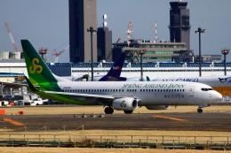 kaeru6006さんが、成田国際空港で撮影した春秋航空日本 737-86Nの航空フォト(飛行機 写真・画像)