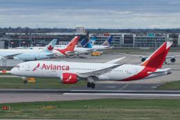 singapore346さんが、ロンドン・ヒースロー空港で撮影したアビアンカ航空 787-8 Dreamlinerの航空フォト(飛行機 写真・画像)