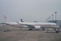 singapore346さんが、羽田空港で撮影したドイツ空軍 A350-941の航空フォト(飛行機 写真・画像)