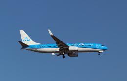 spottingvehicleさんが、イスタンブール空港で撮影したKLMオランダ航空 737-8K2の航空フォト(飛行機 写真・画像)