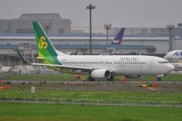 Flying A340さんが、成田国際空港で撮影した春秋航空日本 737-8ALの航空フォト(飛行機 写真・画像)