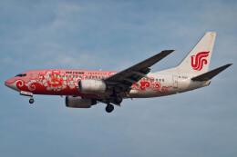 让开我先飞さんが、北京首都国際空港で撮影した中国国際航空 737-79Lの航空フォト(飛行機 写真・画像)