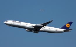 taka1129さんが、羽田空港で撮影したルフトハンザドイツ航空 A340-313Xの航空フォト(飛行機 写真・画像)