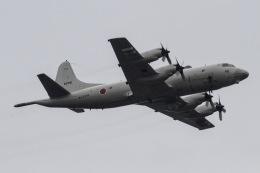 きりしまさんが、朝霞駐屯地で撮影した海上自衛隊 P-3Cの航空フォト(飛行機 写真・画像)