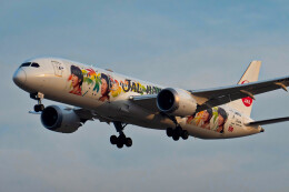让开我先飞さんが、北京首都国際空港で撮影した日本航空 787-9の航空フォト(飛行機 写真・画像)
