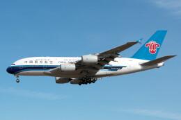 @たかひろさんが、成田国際空港で撮影した中国南方航空 A380-841の航空フォト(飛行機 写真・画像)
