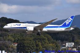 れんしさんが、福岡空港で撮影した全日空 787-8 Dreamlinerの航空フォト(飛行機 写真・画像)